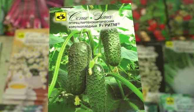 Семена огурцов Ритм