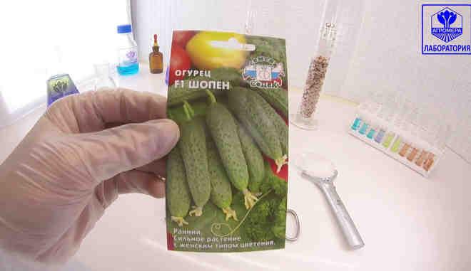 Семена огурцов Шопен f1